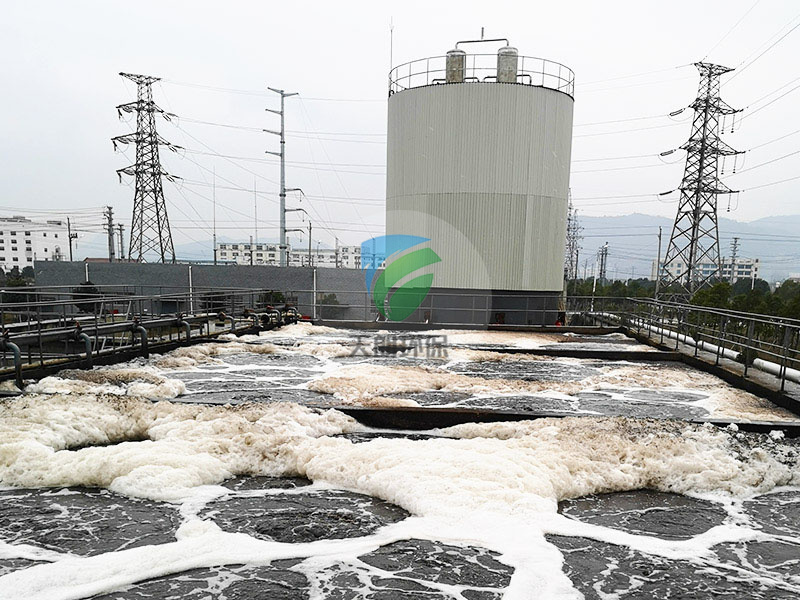 Wuxue Xuri Chemical Co., Ltd. Chemical Wastewater Treatment Project